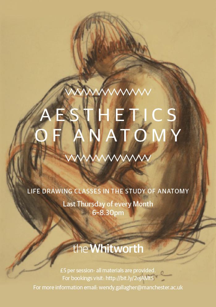 Aesthetics of Anatomy | medhumlab